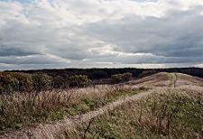 Landscapes front thumbnail